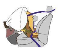 cadeirinha do bebe diante um airbag activo